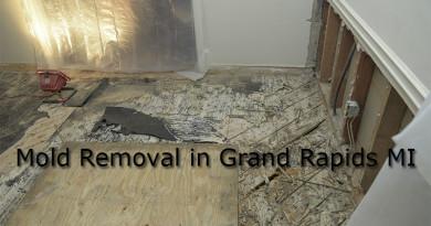 Mold Removal in Grand Rapids MI