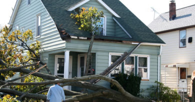 Minimize the Damage to Your Home After a Roof Leak in Grand Rapids Michigan