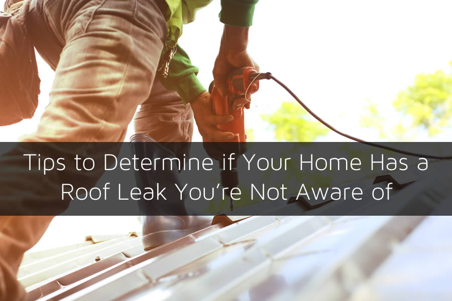 Tips to Determine if Your Home Has a Roof Leak You're Not Aware of