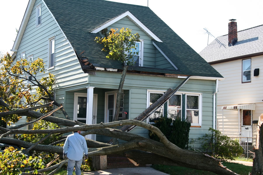 Minimize The Damage To Your Home After A Roof Leak In